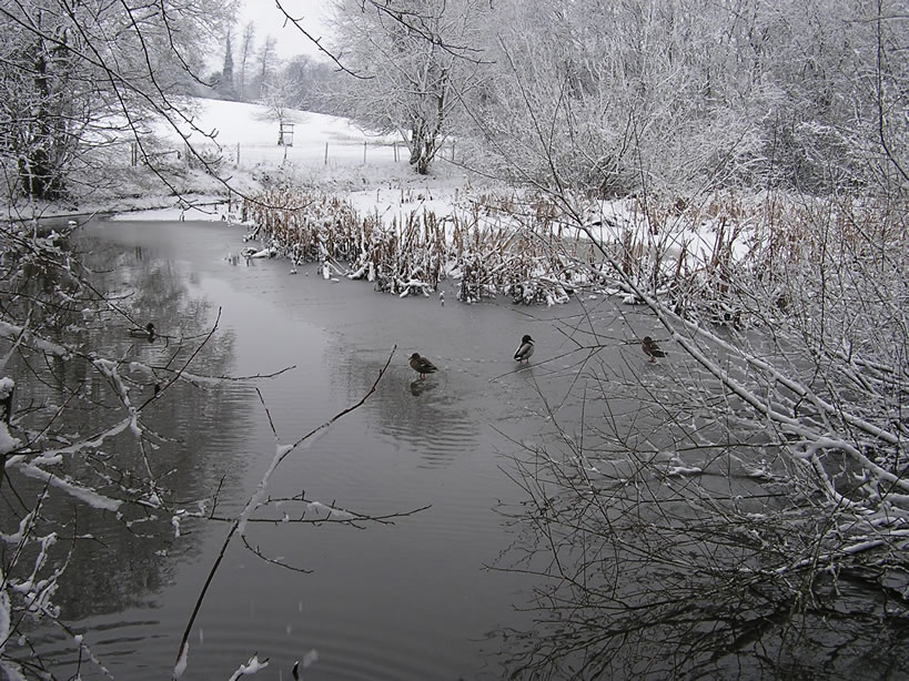 The Long Pond in Winter 4